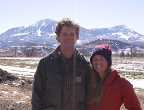 Farmers in Focus: Twisted Root Organic Farm